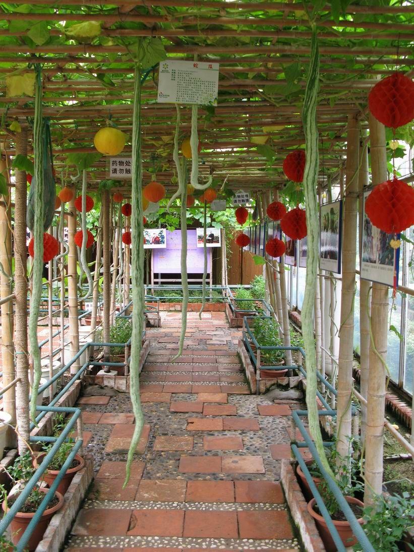 Zhuhai Marvelous Agriculture Science Garden