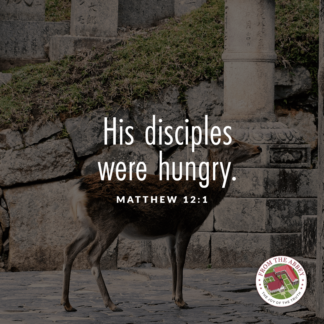 Today's readings in the Holy Mass remind us that God is