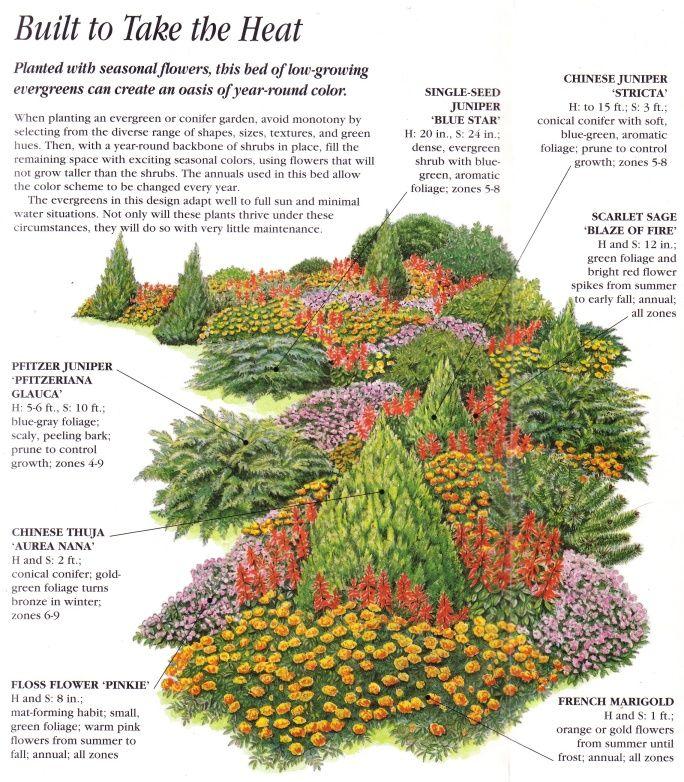 Ideas For An Evergreen Design Evergreen Landscape Front Yard Evergreen Landscape Conifers Garden
