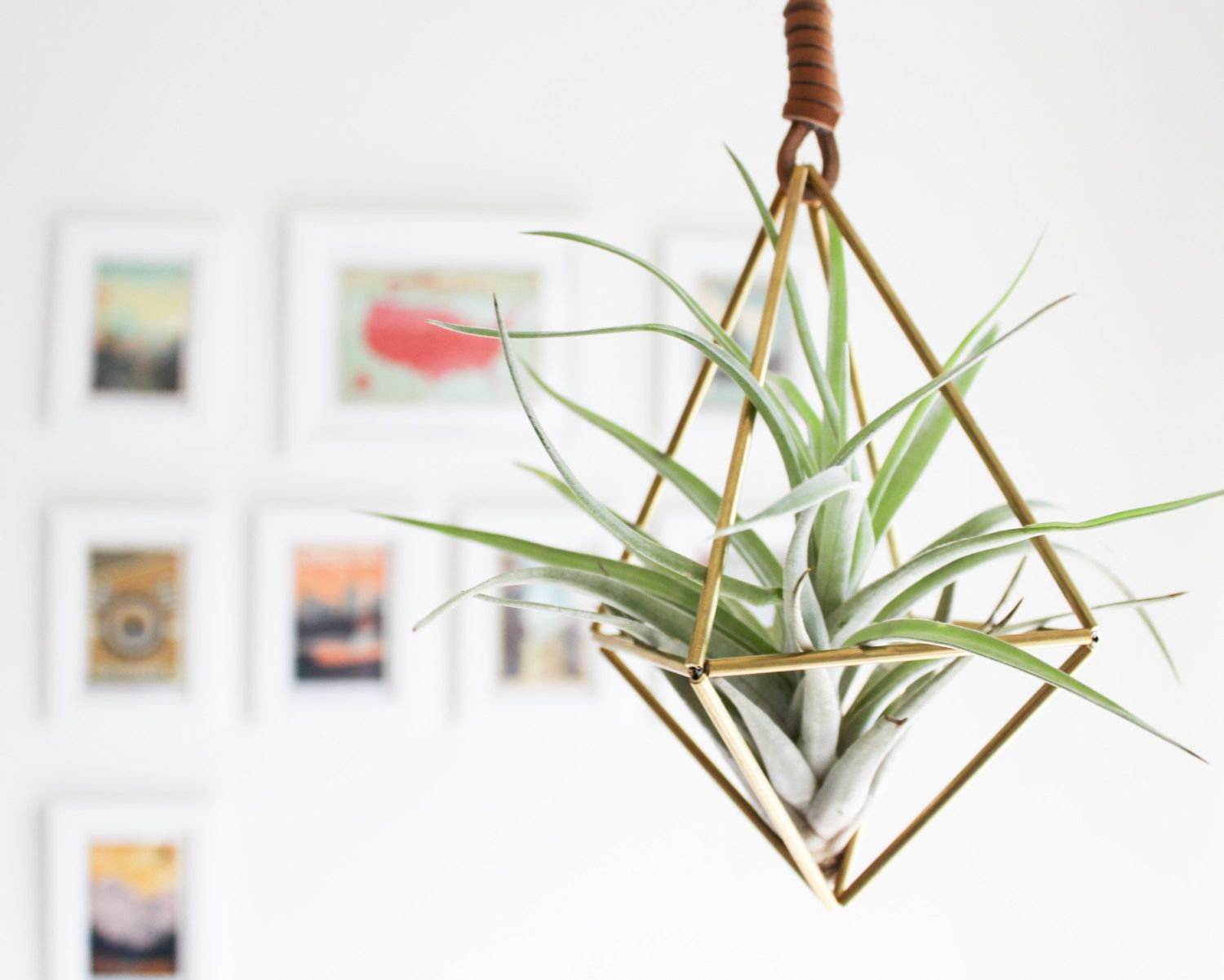 The Himmeli Brass Air Plant Holder. A Beautifully #Modern, Minimalist, Geometric Hanging Ornament that brings naturally life to the #home. Also, the perfect #gift!