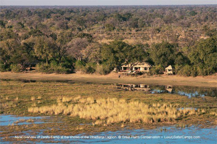 Zarafa - Northern Botswana