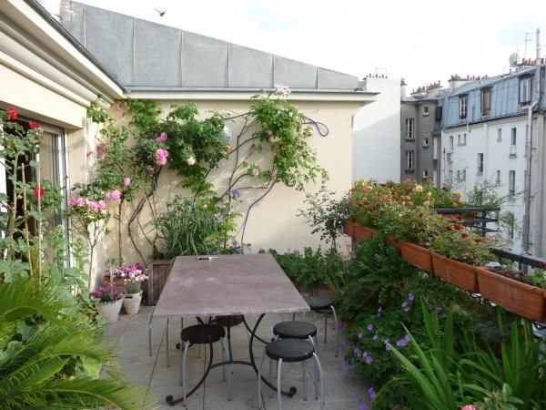 balcon en plein coeur de paris avec rosiers et jardini res alcon terrasse porche pergola. Black Bedroom Furniture Sets. Home Design Ideas