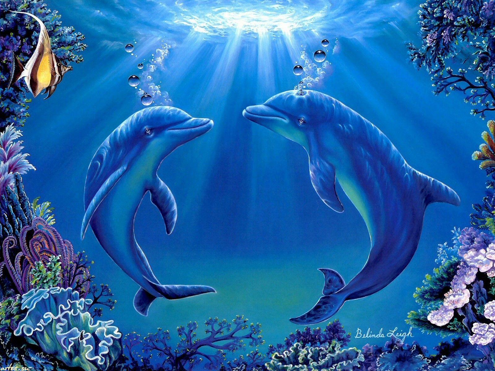 Два дельфина (с изображениями) | Дельфины, Картинки