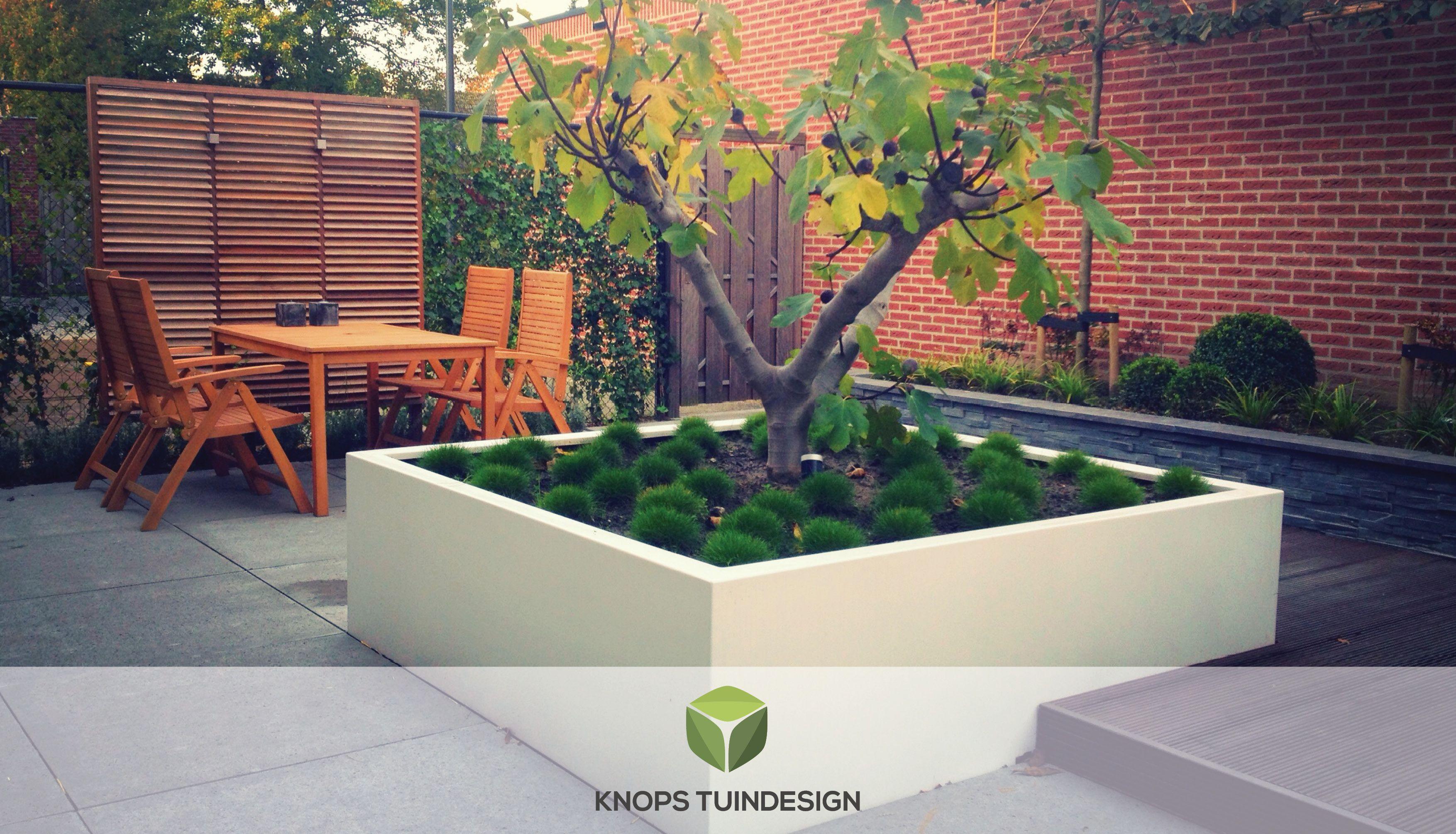 Luxe en minimalistische tuin bavel knops tuindesign