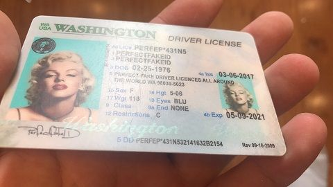 Dmv Tacoma Wa >> Id Driver S License Seattle Fake Novelty Template Quality