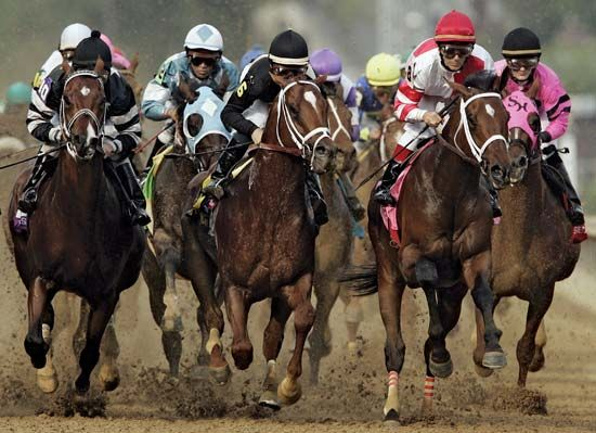 May 5th 2012 Kentucky Derby......only 34 days and counting