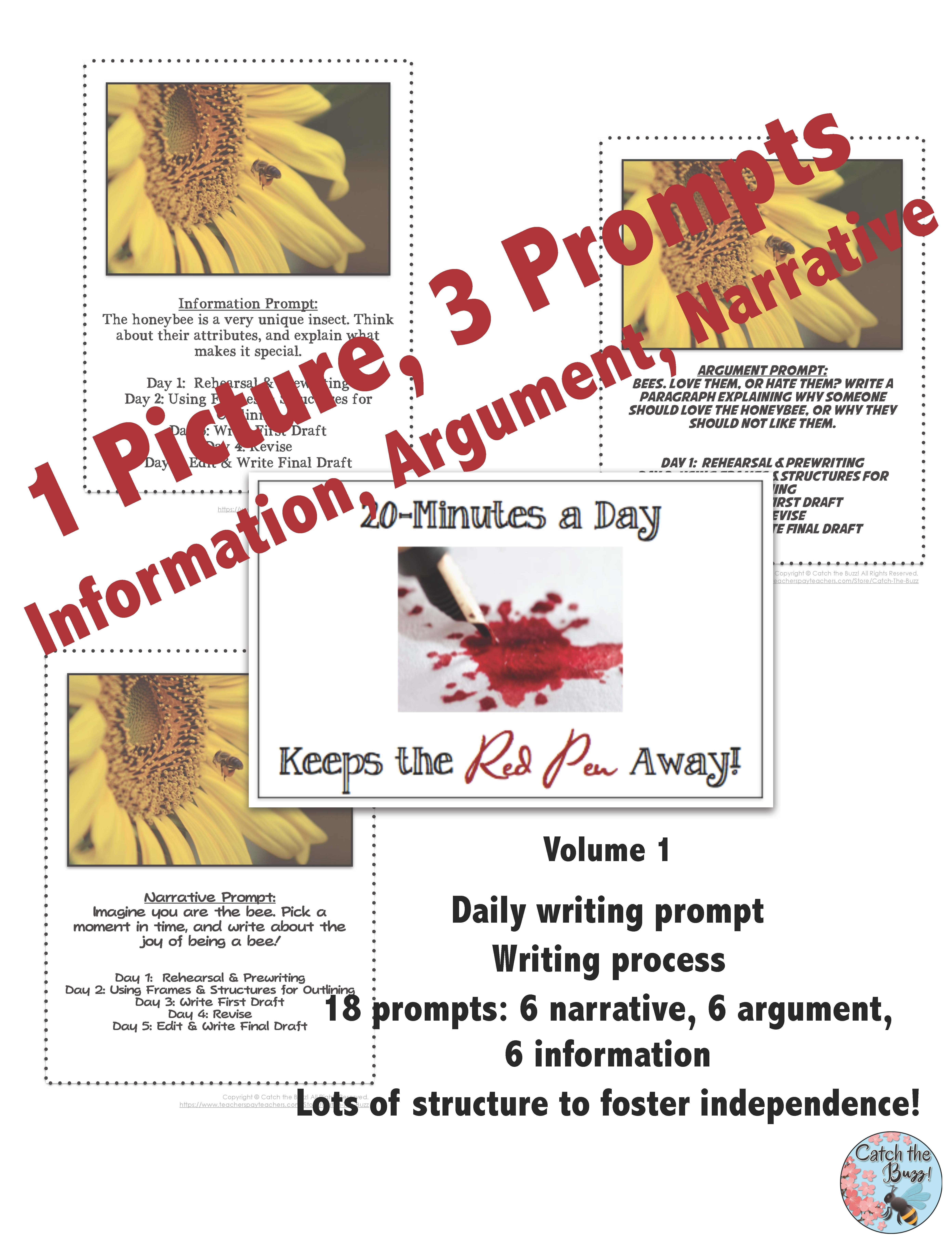 hight resolution of Daily Paragraph Writing: 20 Minutes a Day Keeps the Red Pen Away