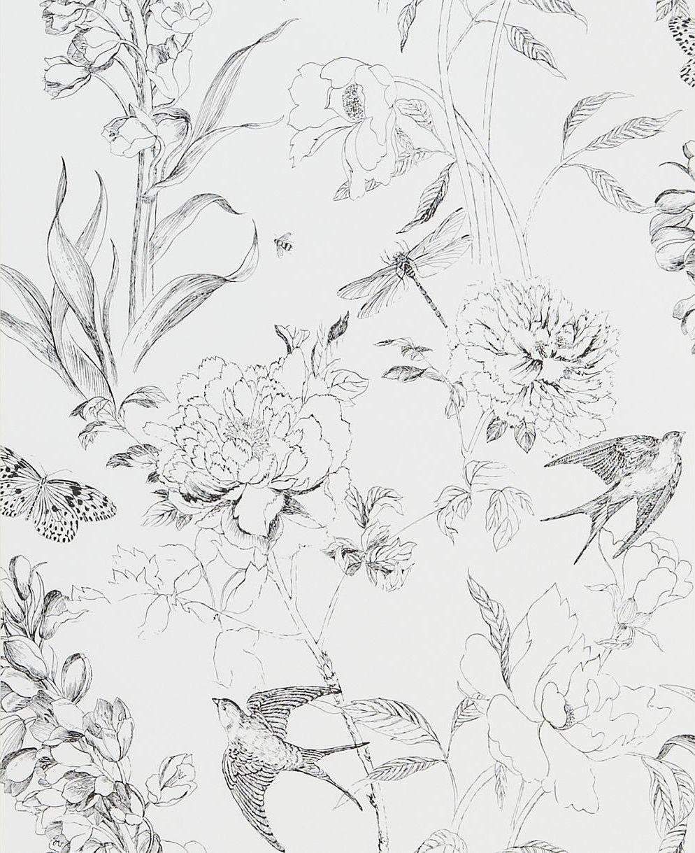 Photo of Sibylla Garden von Designers Guild – Schwarz / Weiß – Wallpaper: Wallpaper Direct