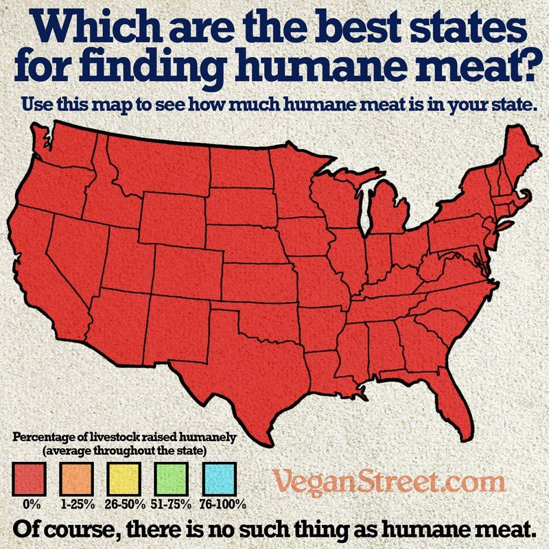 ... Of course, there is no such thing as humane meat ~ courtesy VeganStreet #vegan