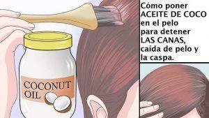 como aplicar aceite de coco en el cabello hombre