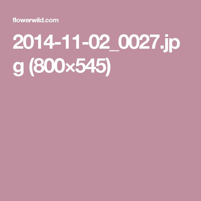 2014-11-02_0027.jpg (800×545)