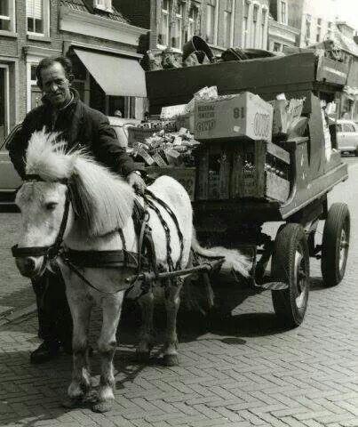 Petroleum boer. De paarden werden in een pakhuis onder de bovenwoningen gestald