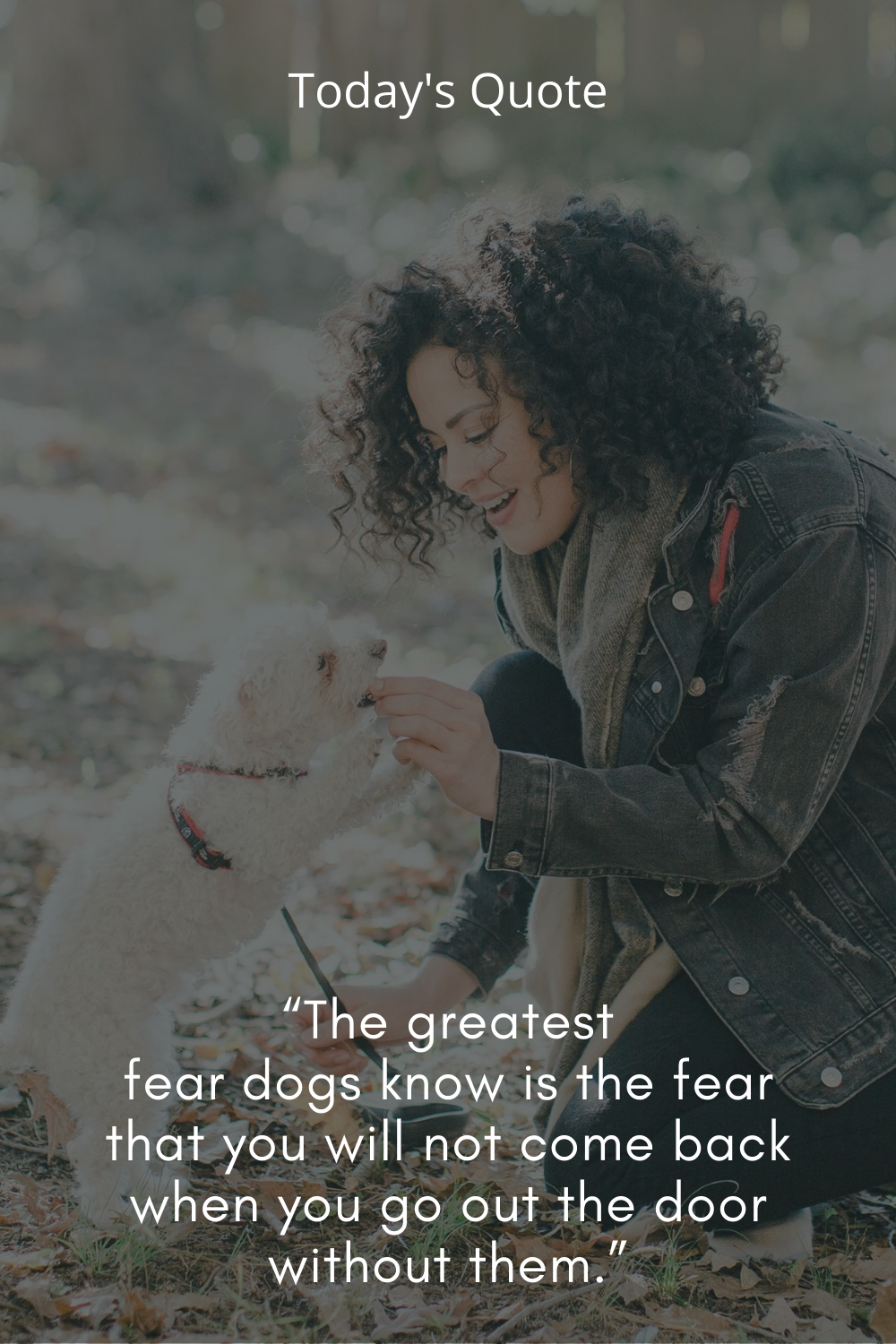 Todays Quote Today Quotes Dog Quotes Great Fear