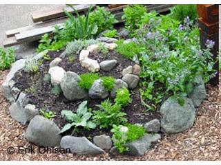 Huerto en espiral como hacer un huerto de plantas for Jardin de plantas aromaticas