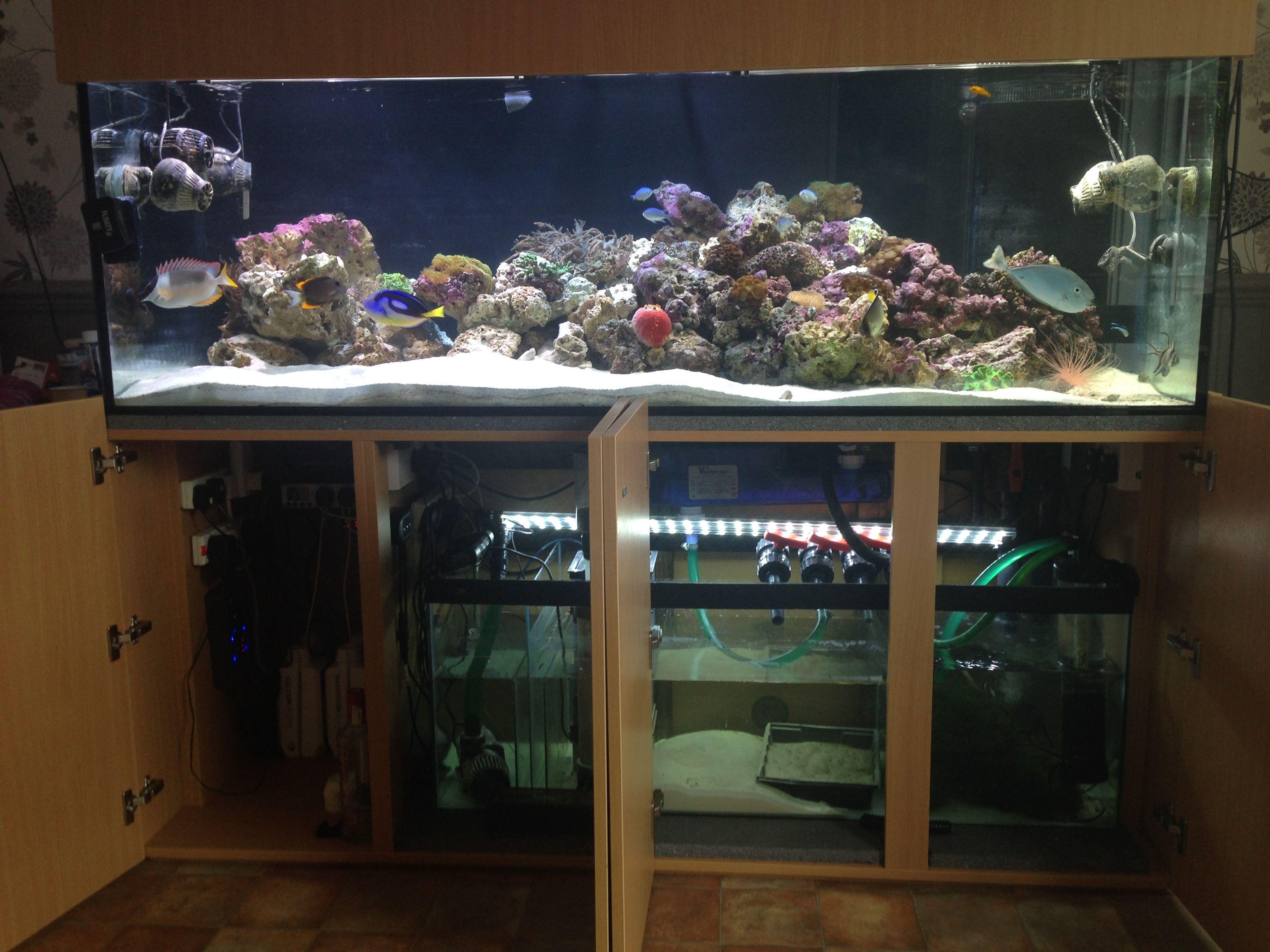 Marine Aquarium 72x24x24 With Doors Open, Modern Cabinet Design.