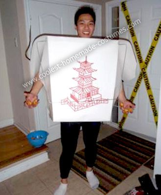 Homemade Chinese Take Out Costume First I have to give credit to my friend who came up with the idea to go as u201cleftovers in foil shaped like a swanu201d for ...  sc 1 st  Pinterest & Coolest Homemade Chinese Take Out Costume | Pinterest | Costumes ...