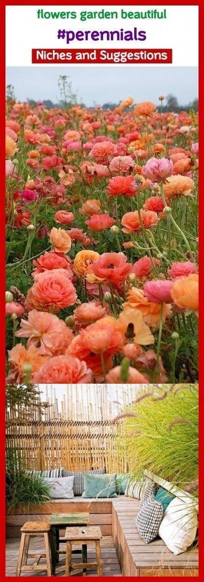Photo of Flowers garden beautiful #perennials #seo #pinterestniches #gardens. Blumen Klei…