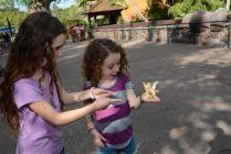 Heading to Disney World with preschoolers? Here's everything you need to know before you go!