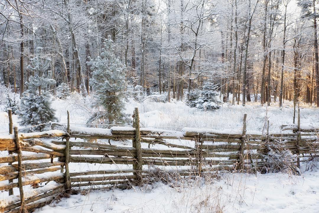 En klassisk gärdsgård i vinterskrud i Valla i Linköping. #visitlinkoping #visitsweden #gamlalinkoping #landscape #weekly_ #winter #igdaily #ignature #igsweden #igwinter #ig_captures #ig_sweden #ig_great_pics #sweden #sweden_photolovers #sverige #ig_sverige #fotograf #jonas_fotograf #ilovesweden #meralink #landscape #winterlandscape #naturephotography #nature #light #vinter
