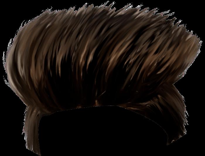 Hairstyle Picsart 700 535 Transprent Png Free Download Hair Black Hair Wig Hair Png Photoshop Hair Download Hair