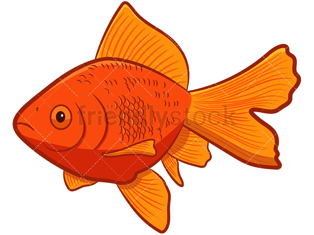 Goldfish Cartoon Vector Clipart Friendlystock Cartoons Vector Goldfish Clip Art