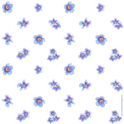 Free digital forget-me-not flower scrapbooking papers - ausdruckbares Geschenkpapier - freebie | MeinLilaPark – DIY printables and downloads