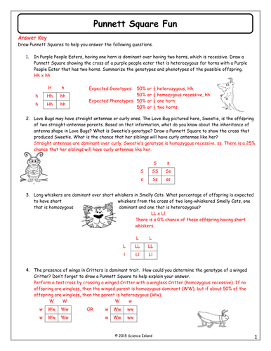 Inheritance Activities Genetics Terminology And Punnett Squares