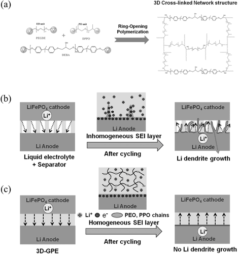 Pin By Glsilover On Chemical Polymer Networking Dendrite