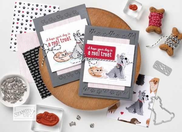 Pin on Cards-Stampin Up