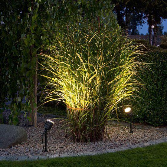 Iluminación para el jardín PLANTAS Y JARDIN Pinterest Back - iluminacion jardin