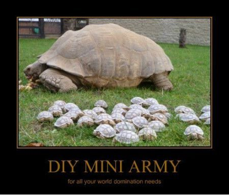62af2f37ea7d574a4a9e9e81b5cebdd8 diy mini army tortoise * costumes for halloween, easter