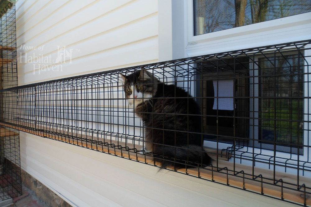 Safe, Friendly Cat and Dog Enclosures » Home of Habitat