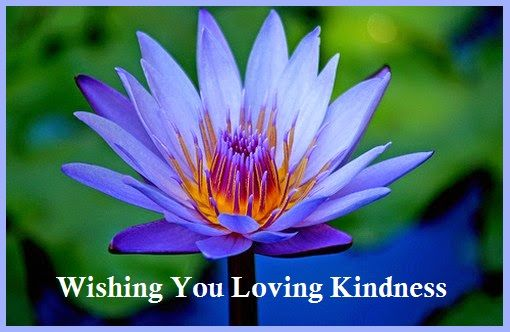 Loving Kindness Metta Meditation Meditationvisualization Heals