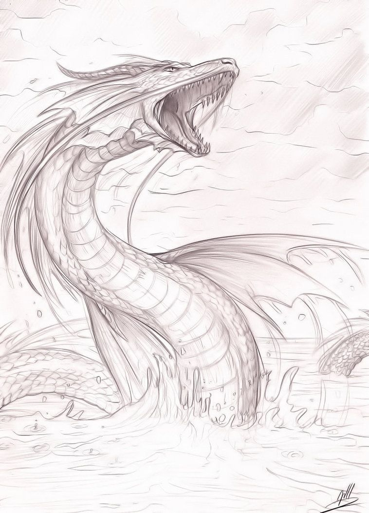 Sea Dragon Drawing at GetDrawings | Free download