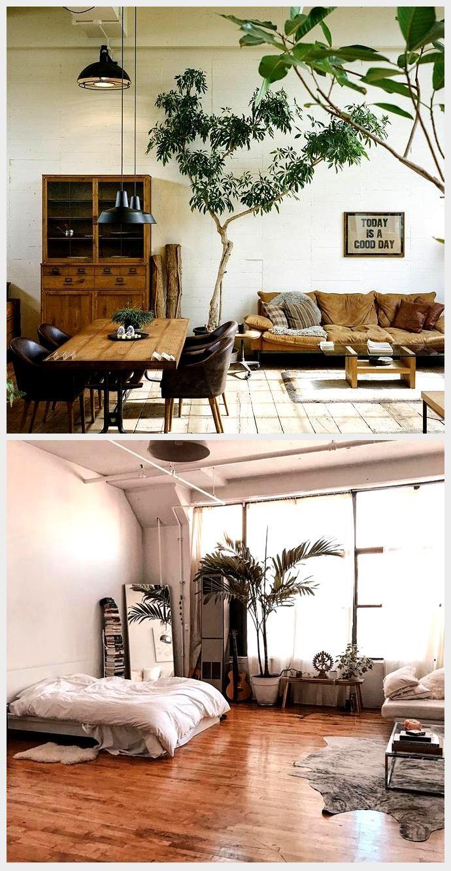Pflanzen Als Statement Zu Hause Alles Um Ihr Zuhause Zu Ihrem