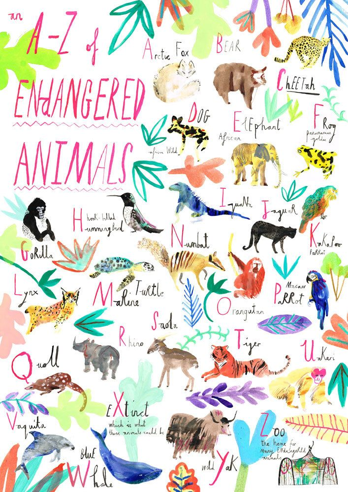 An AZ of endangered animals. Animal illustration