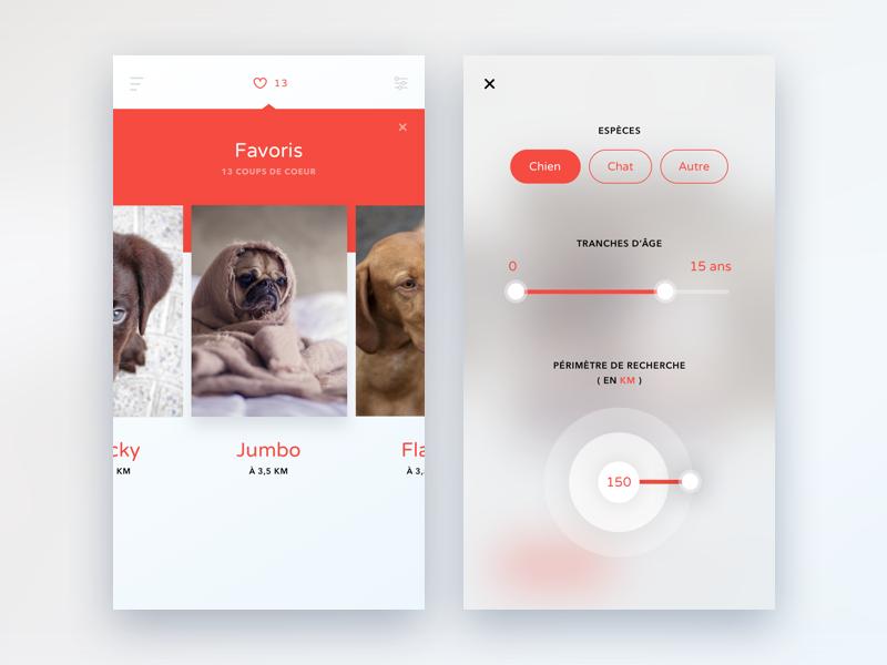 Pet Adoption App Mobile App Design Pet Adoption App