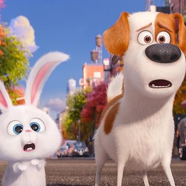 The Secret Life Of Pets Ew Review Secret Life Of Pets Pets Movie Secret Life