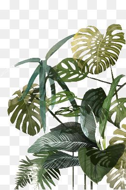Palm Palm Leaf Leaves Hand Painted Tropical Hand Painted Background Shading Leaf Texture Clothing Printed P Tree Photoshop Architecture Collage Leaf Background
