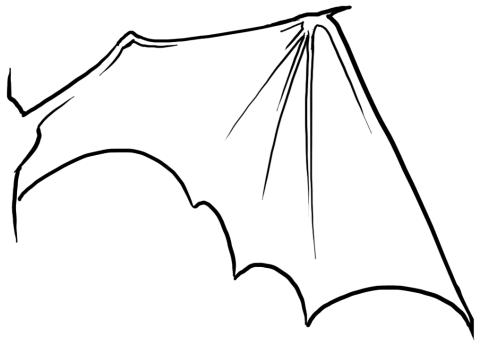 Dragon Wing Open Line Art Png 480 345 Ideen