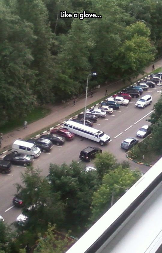 Parking A Limo Like A Boss Funny Pictures Funny Memes Bones Funny
