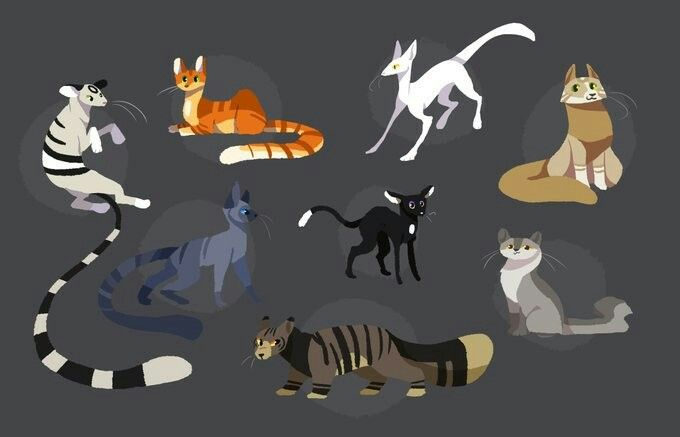 Pin By Dragon On Warriors Warrior Drawing Warrior Cat