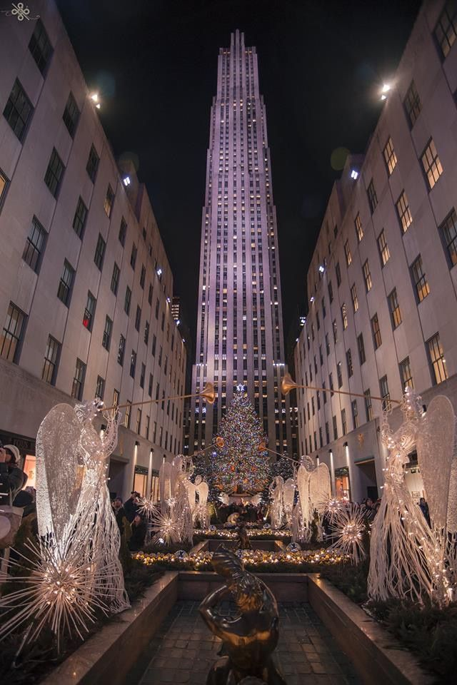 Pin by terri anna draudt on joyeux noel in 2020 (With ...