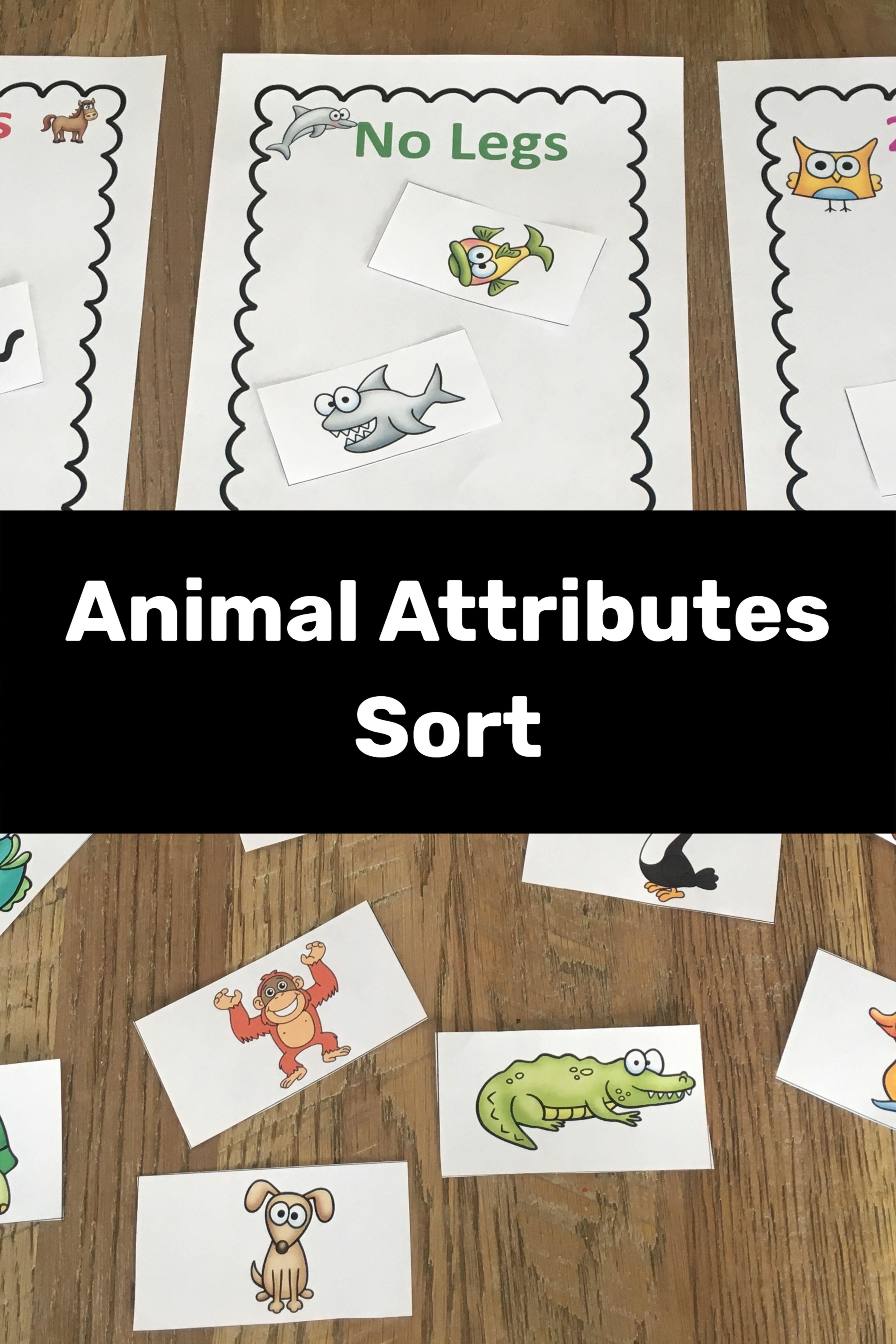 Animal Classification Activity | Animal classification activity, Animal  classification, Sorting activities