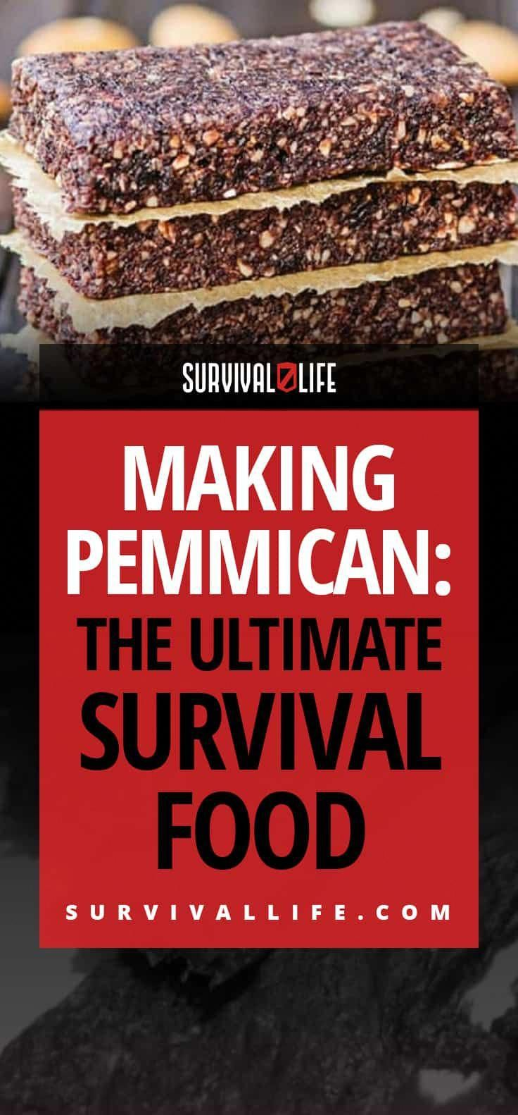 Making Pemmican The Ultimate Survival Food