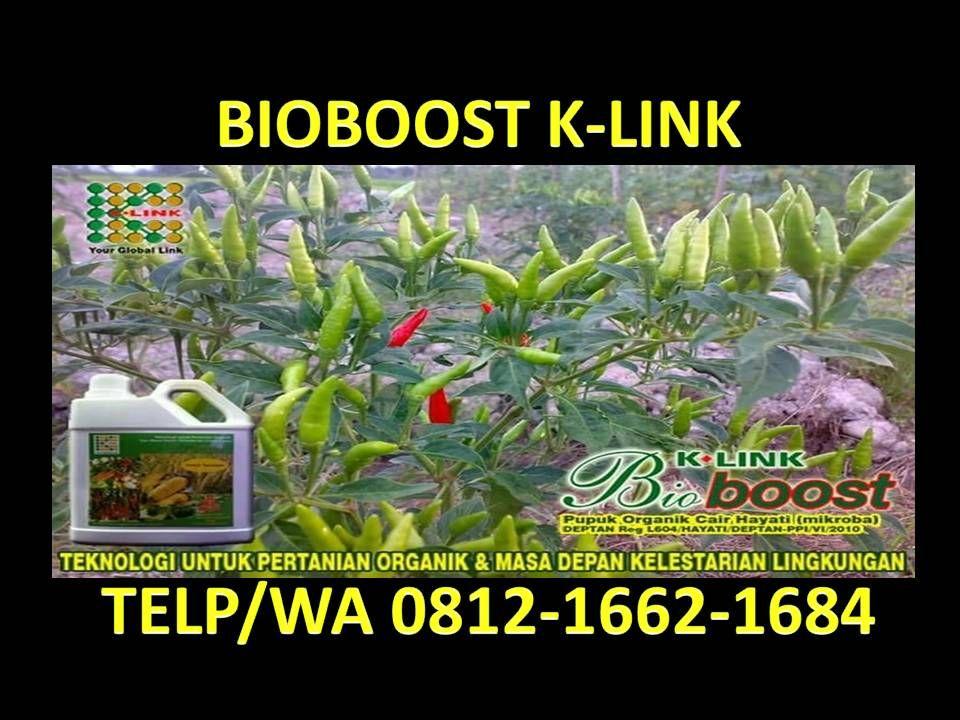 Hp Wa 0812 1662 1684 T Sel Bioboost Untuk Durian Pupuk Hayati