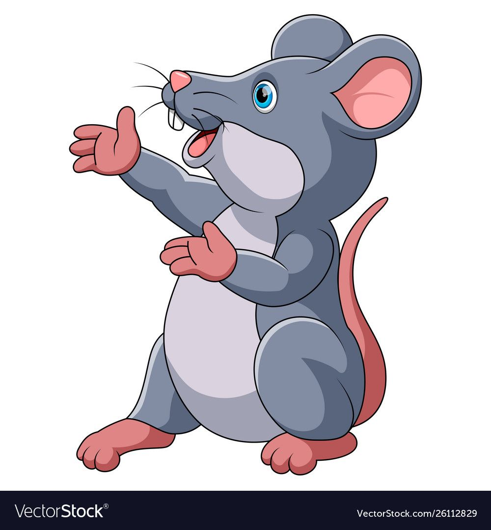 Cute Mouse Cartoon Presenting Vector Image On Vectorstock Cute Mouse Cartoon Cute Mouse Mouse Cartoon
