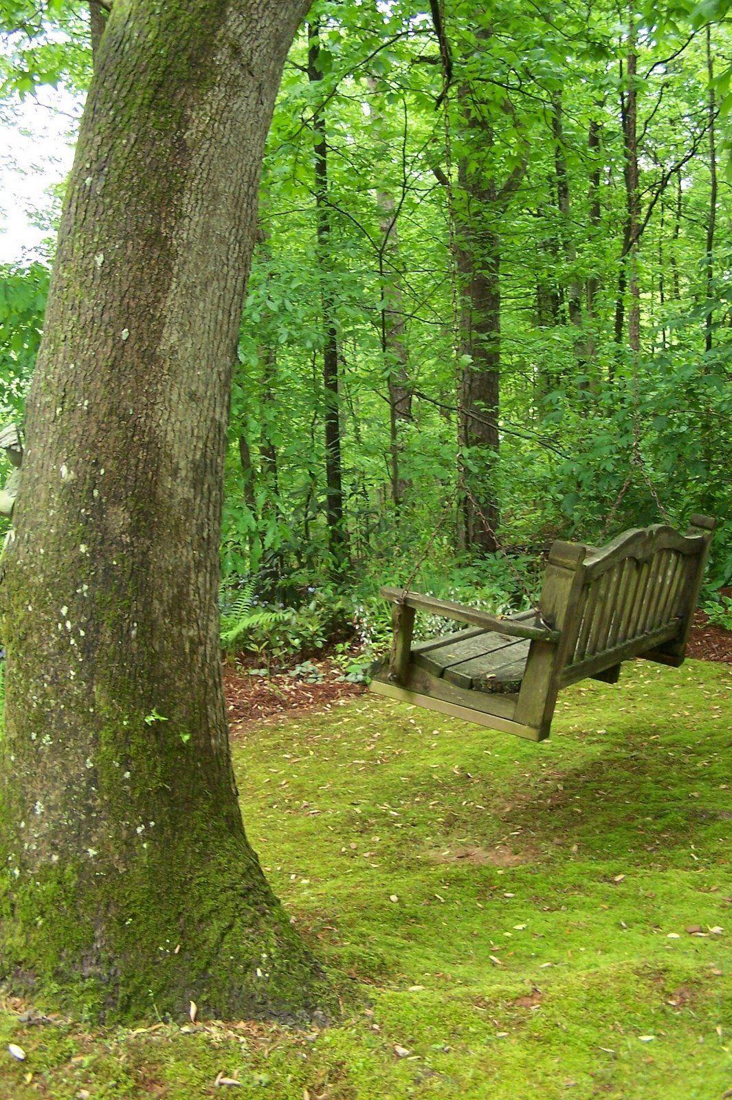 Perfect spot for a swing groooovy man pinterest swings