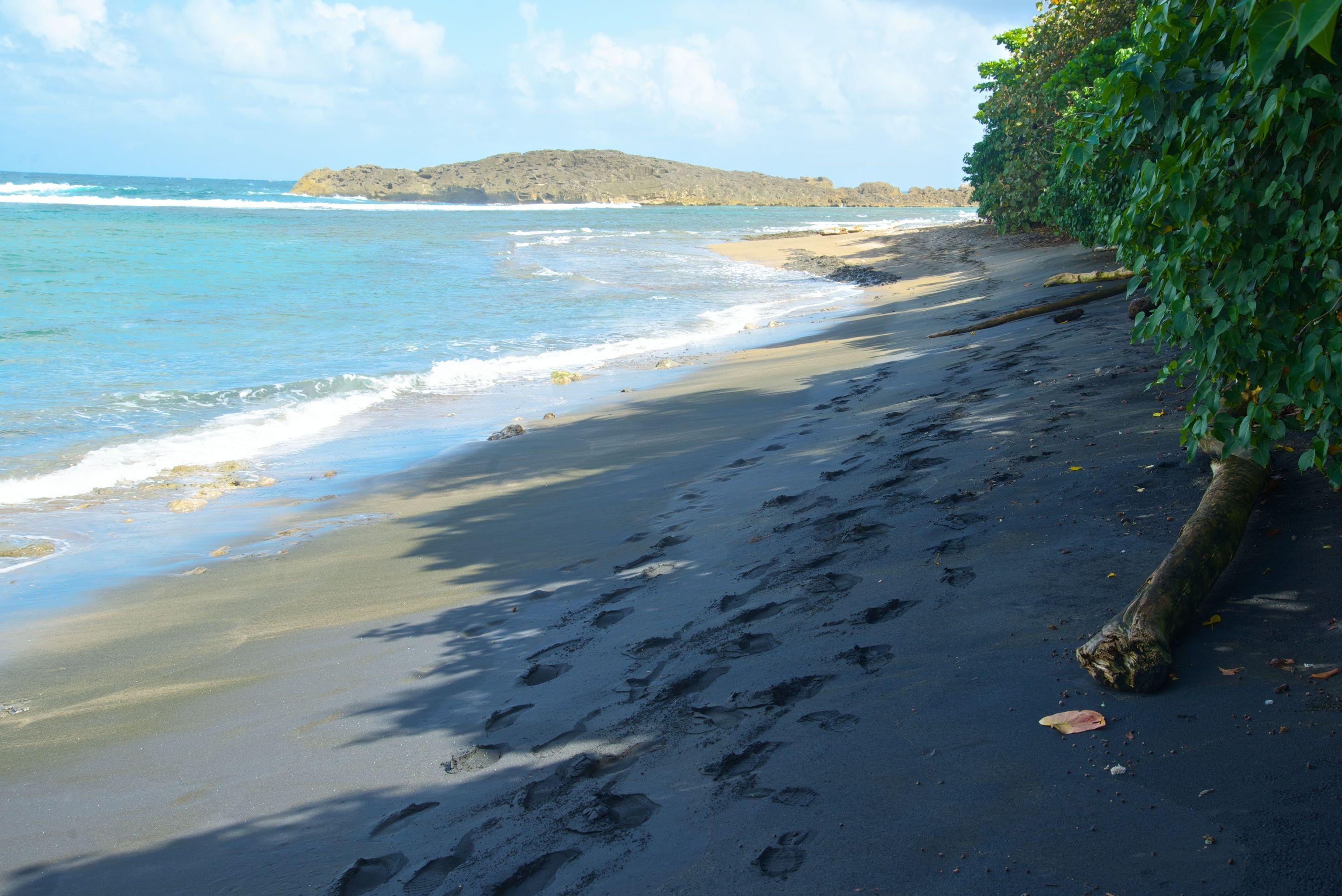 Black Sand Beach Near Hacienda La Esperanza In Manat