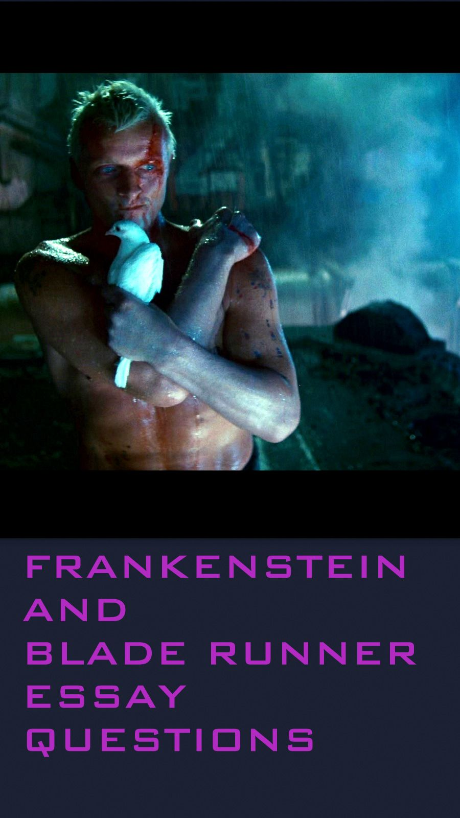 frankenstein blade runner comparison Frankenstein and blade runner both focus on the borders of technology and imagination to create life, these two texts reveal that many matters are timeless as they stay related to one another despite the difference in context.